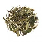 Herbata biała China Pai Mu Tan